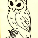 Owl - Most High Priests in Satanisim or the Occult worship the owl as a god